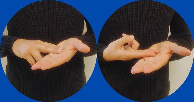 Slovenski znakovni jezik
